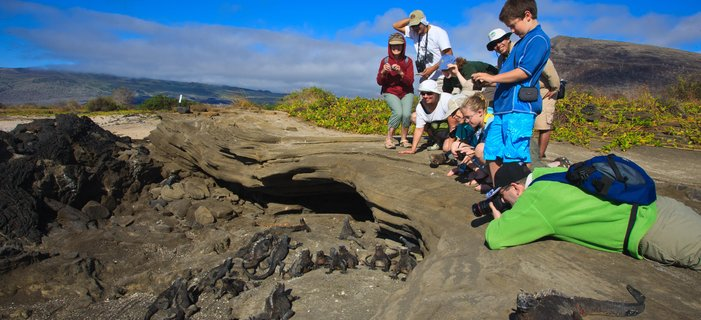 Galápagos Adventure: A Family Journey <p>Discover the natural wonders of the Gal&aacute;pagos Islands with your children and grandchildren. You&#39;ll explore four islands, snorkel with sea lions and go on nature walks, and learn about giant tortoise conservation and Darwin&#39;s theories. Plus enjoy stays at two island inns.</p>