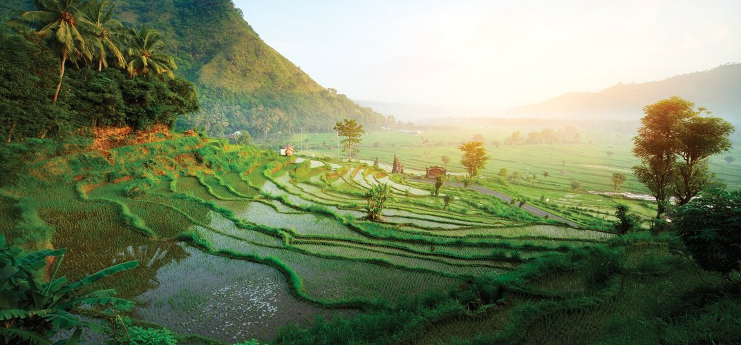 The World Heritage <i>subak</i> or rice terraces in Bali