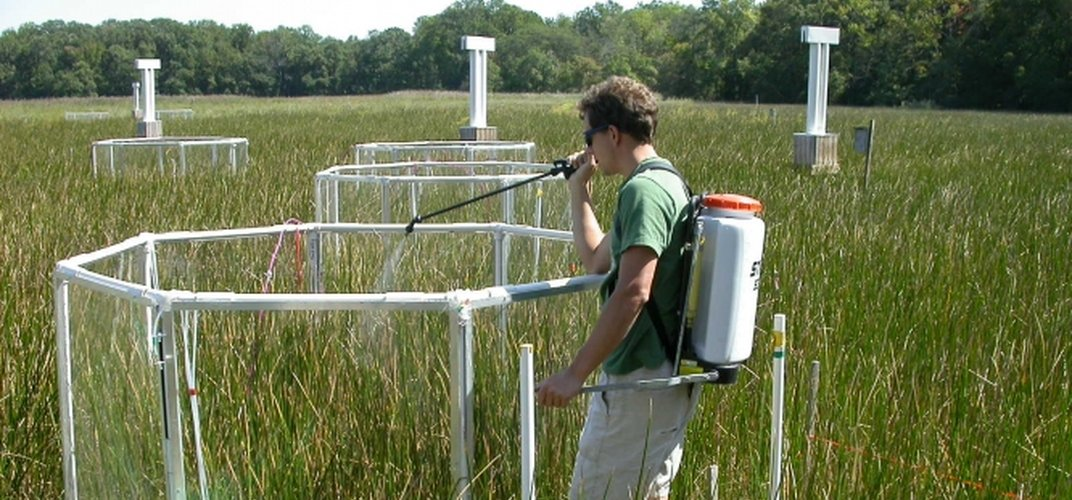 Scientist at work at the Smithsonian Environmental Research Center