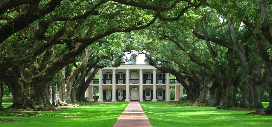 Oak Alley Plantation, with a quarter mile of oak trees leading to the Greek Revival mansion